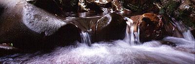 Foto Il canyon dell'Orrido di Botri