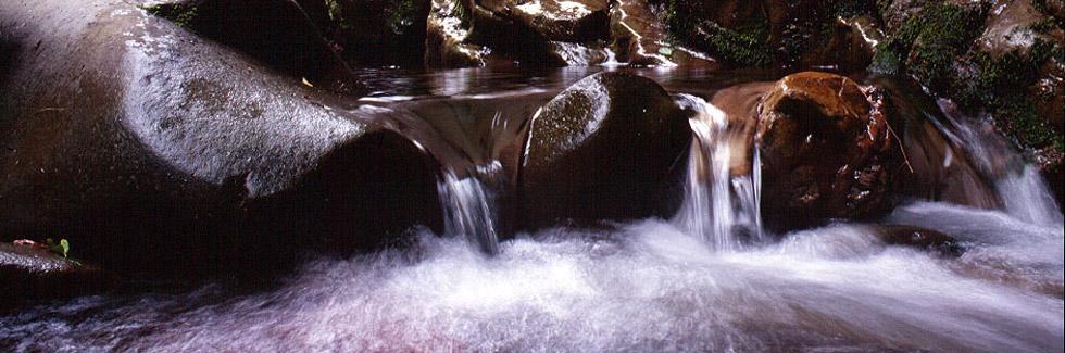 Il canyon dell'Orrido di Botri