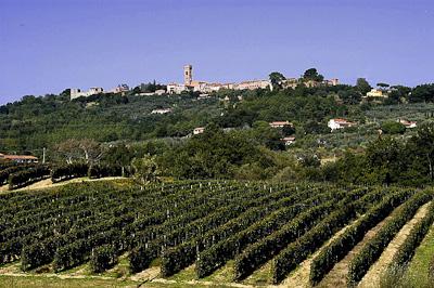 Foto Montecarlo e vigneti - realized by www.develup.it - copyright