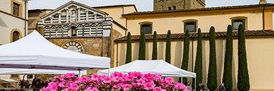 Foto La Via Francigena a Lucca