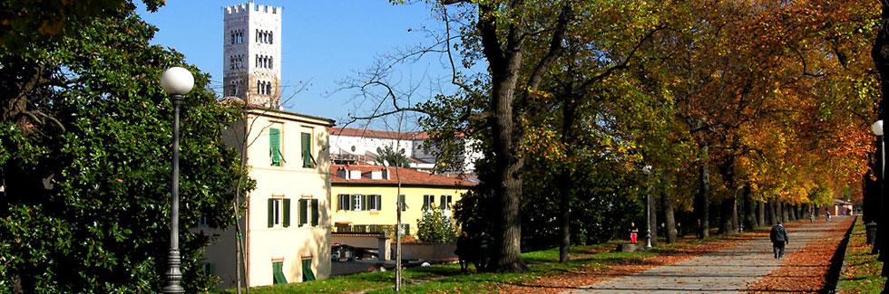 Le mura della citta' di Lucca