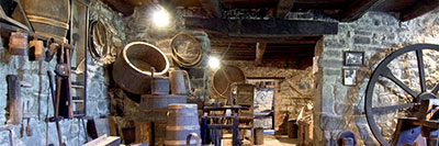 Foto Museo del castagno