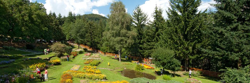 Parco naturale dell'Orecchiella