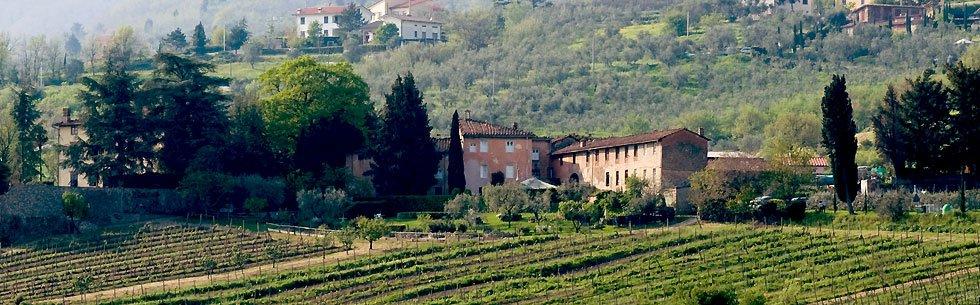 Fattoria Villa Maionchi
